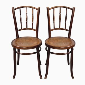 Bentwood Chairs with Floral Seat, 1910s, Set of 2
