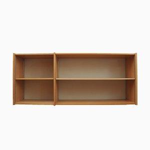 Mid-Century RZ57 Shelf by Dieter Rams for Otto Zapf, 1950s