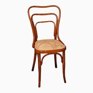 Art Nouveau Model No. 248 Chair by Adolf Loos for Jacob & Josef Kohn, 1900s