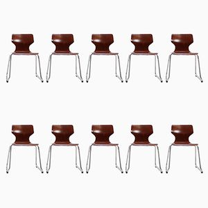 Dining Chairs by Elmar Flötotto, 1970s, Set of 10