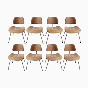 Vintage Chairs by Charles & Ray Eames for Herman Miller, 1950s, Set of 8