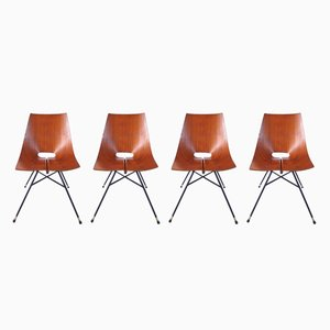 Dining Chairs from Societá Compensati Curvati, 1955, Set of 4