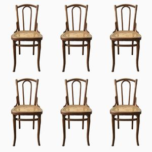 Antique 56 Chairs by Michael Thonet, Set of 6
