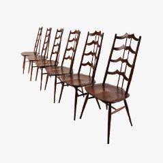 Mid-Century Esszimmerstühle aus Gebeiztem Holz von Lucian Ercolani für Ercol, 6er Set