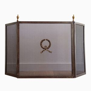Neoclassical Steel and Brass Fire Place Screen