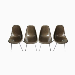 Chocolate Brown H-Base Chrome Chairs by Charles & Ray Eames for Herman Miller, Set of 4