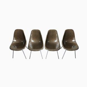 Schokobrauner Stuhl mit Verchromtem H-Förmigen Gestell von Charles & Ray Eames für Herman Miller, 4er Set