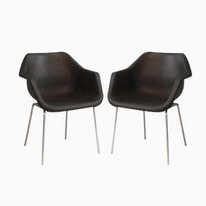 English Armchairs by Robin Day for Hille, 1967, Set of 2