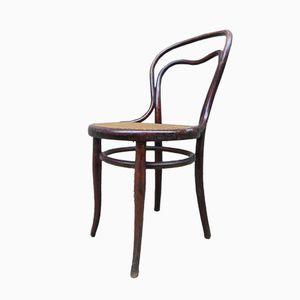 No 31 Dining Chair from Thonet, 1880