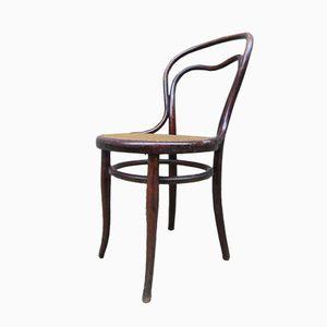Nr 31 Stuhl von Thonet, 1880