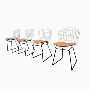 White U0026 Black Wire Chairs By Harry Bertoia For Knoll