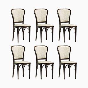 Esszimmerstühle von Gustav Siegel für Thonet, 1910, 6er Set