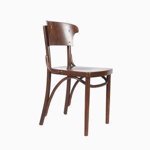 Stühle aus Bugholz von Thonet, 1930er, 4er Set