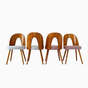 Esszimmerstühle von Antonin Šuman, 1960er, 4er Set