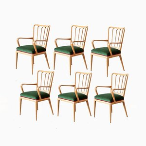 Stühle aus Ahornholz von Osvaldo Borsani, 1954, 6er Set