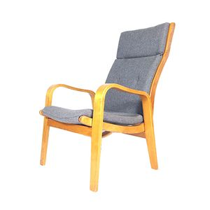 FB-06 Easy Chair by Cees Braakman for UMS Pastoe, 1950s