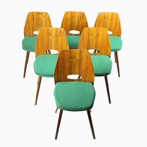 Dining Chairs by František Jirak for Tatra Nábytok Pravenec, 1960s, Set of 6