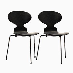 Chaises Ant par Arne Jacobsen pour Fritz Hansen, 1974, Set de 2