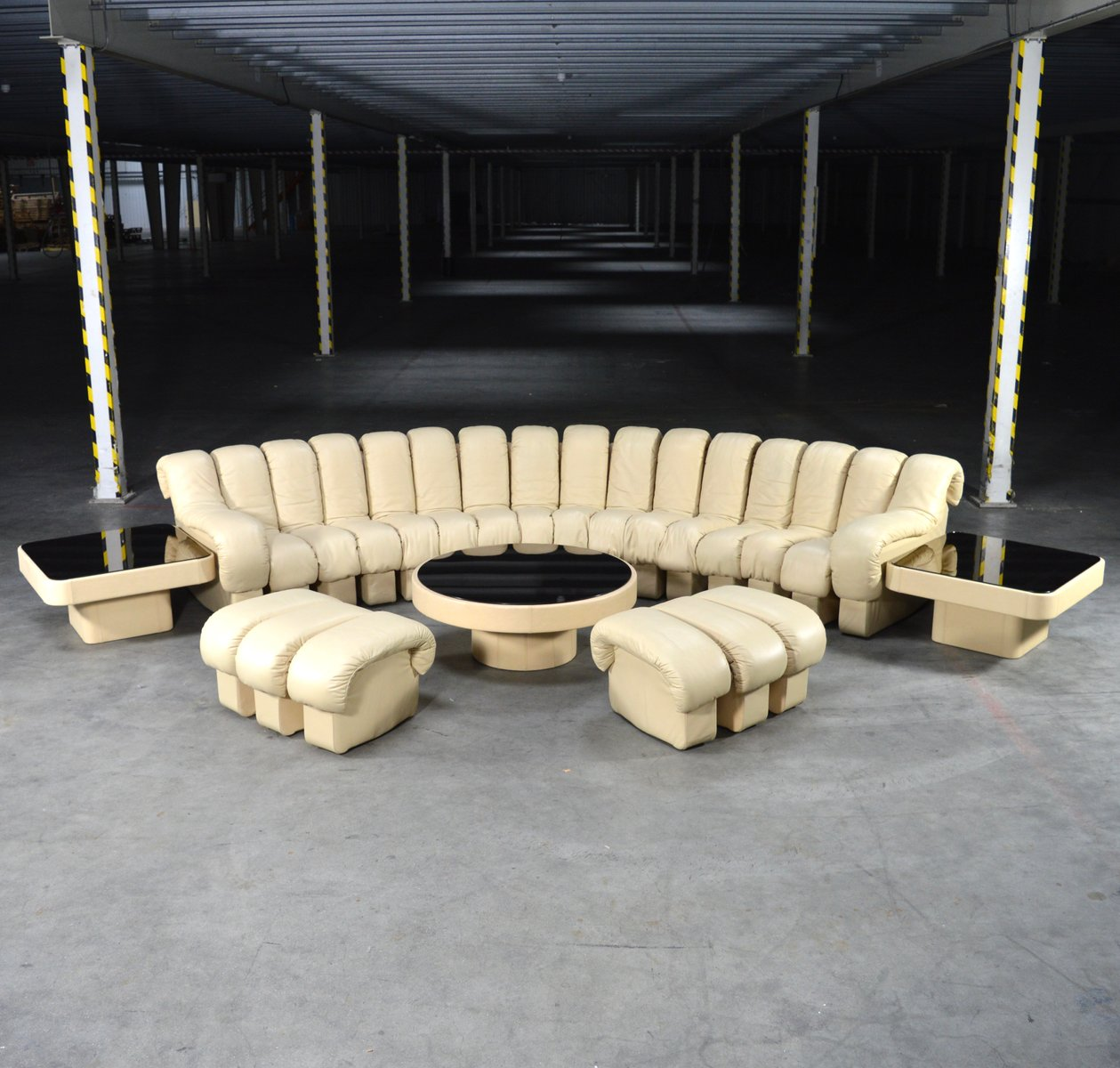 Ds600 Snake Non Stop Sectional Sofa Set By Peduzzi Riva