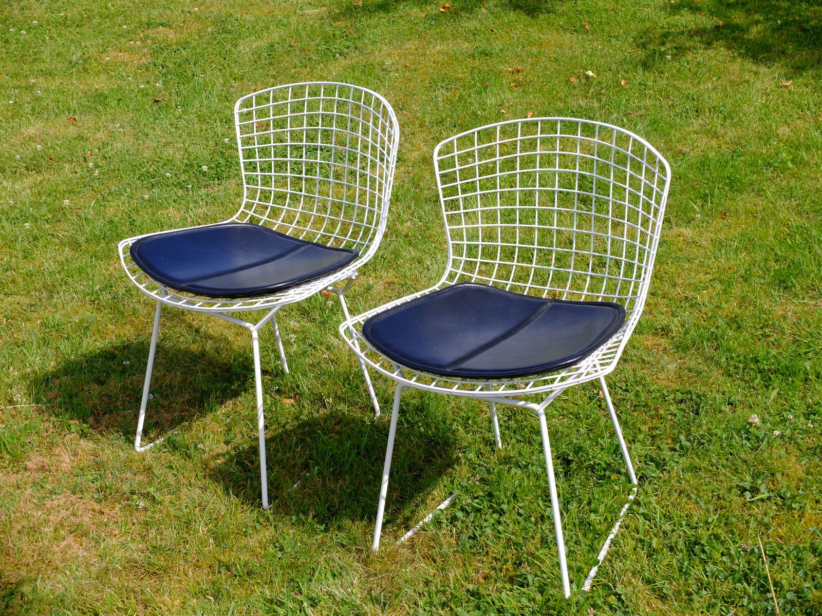 Chairs by harry bertoia for knoll 1952 set of 2 for sale at pamono - Knoll inc chairs ...