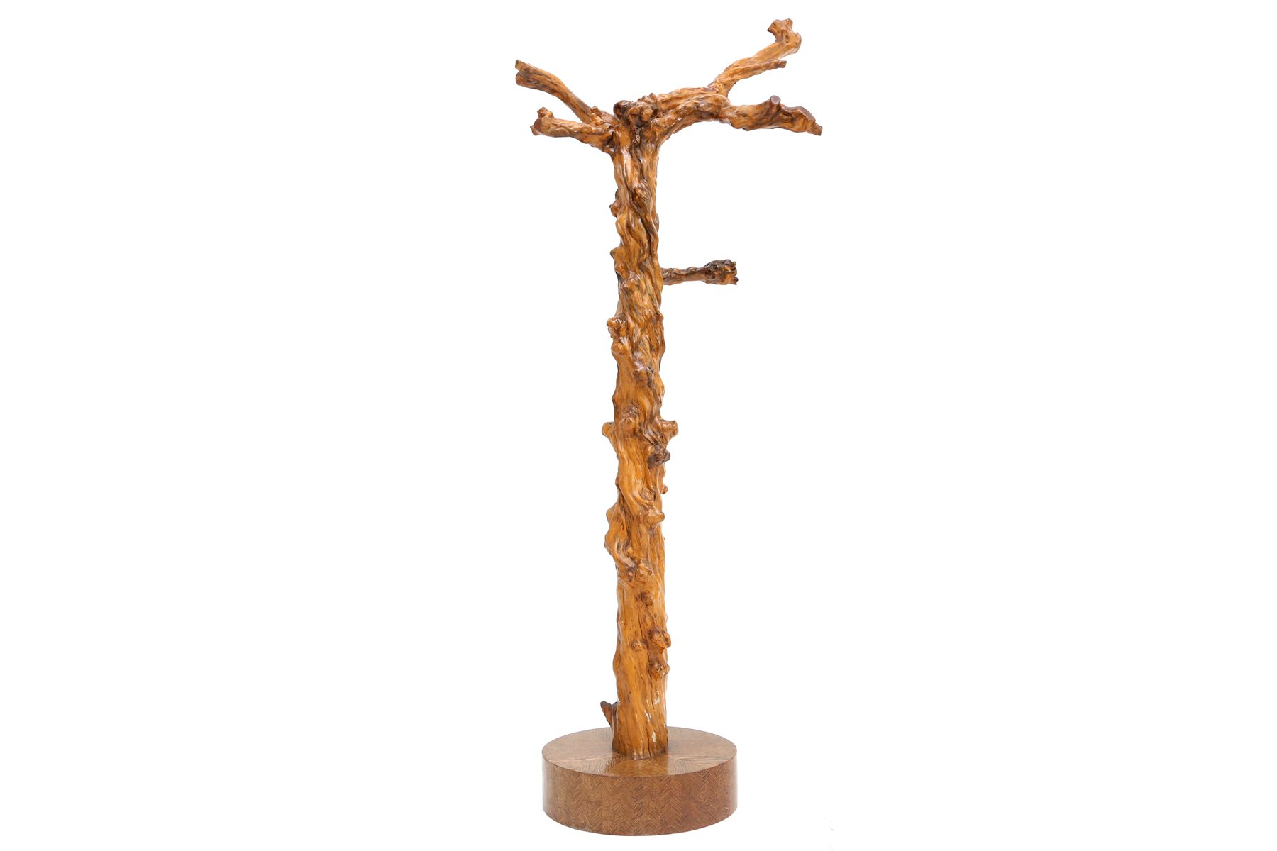 Very Impressive portraiture of French Grape Wood Tree Coat Rack 1930s for  sale at Pamono with