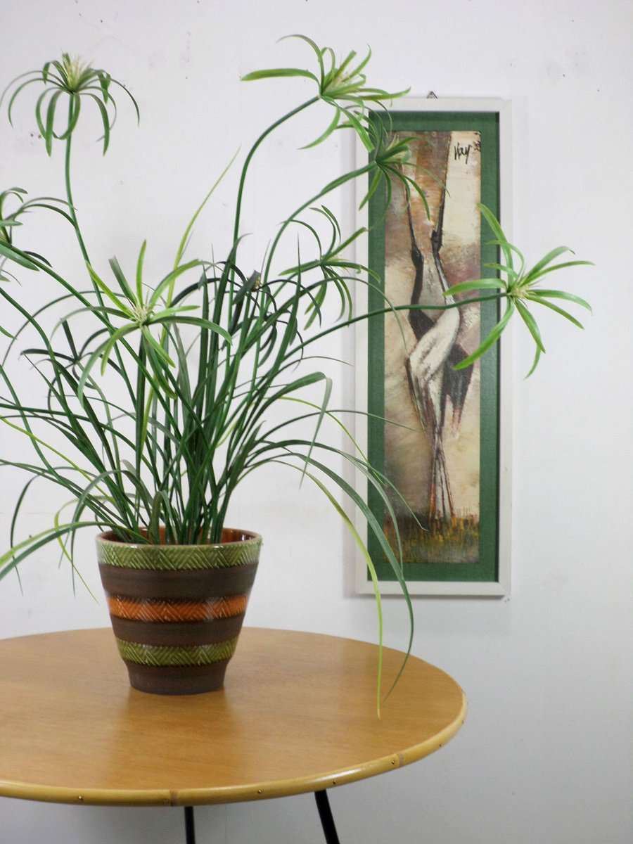 Deutscher couchtisch aus eiche bambus metall 1950er for Couchtisch bambus