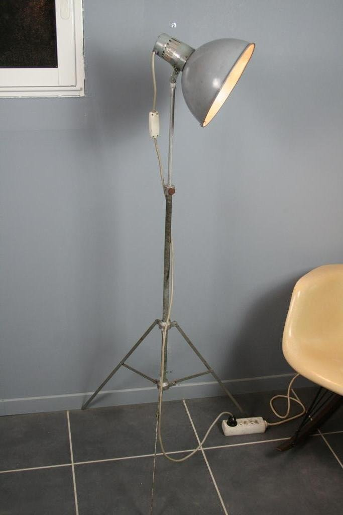Grey Industrial Floor Lamp For Sale At Pamono