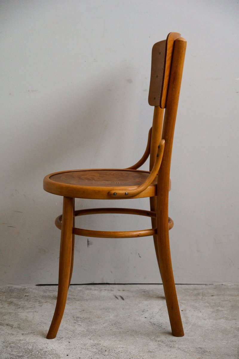 Price: €800.00 Regular Price: €890.00 - Antique Bentwood Chairs From Möbel & Furnier Fabrik AG, 1910s, Set