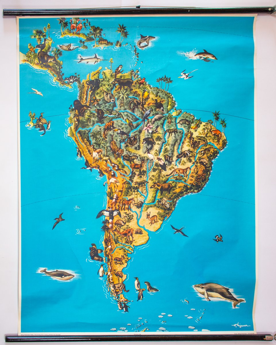 South America: Animals Of South America Map, 1964 For Sale At Pamono