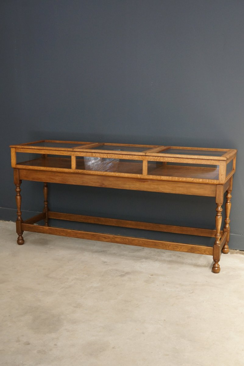 English Oak Museum Display Cabinet For Sale At Pamono