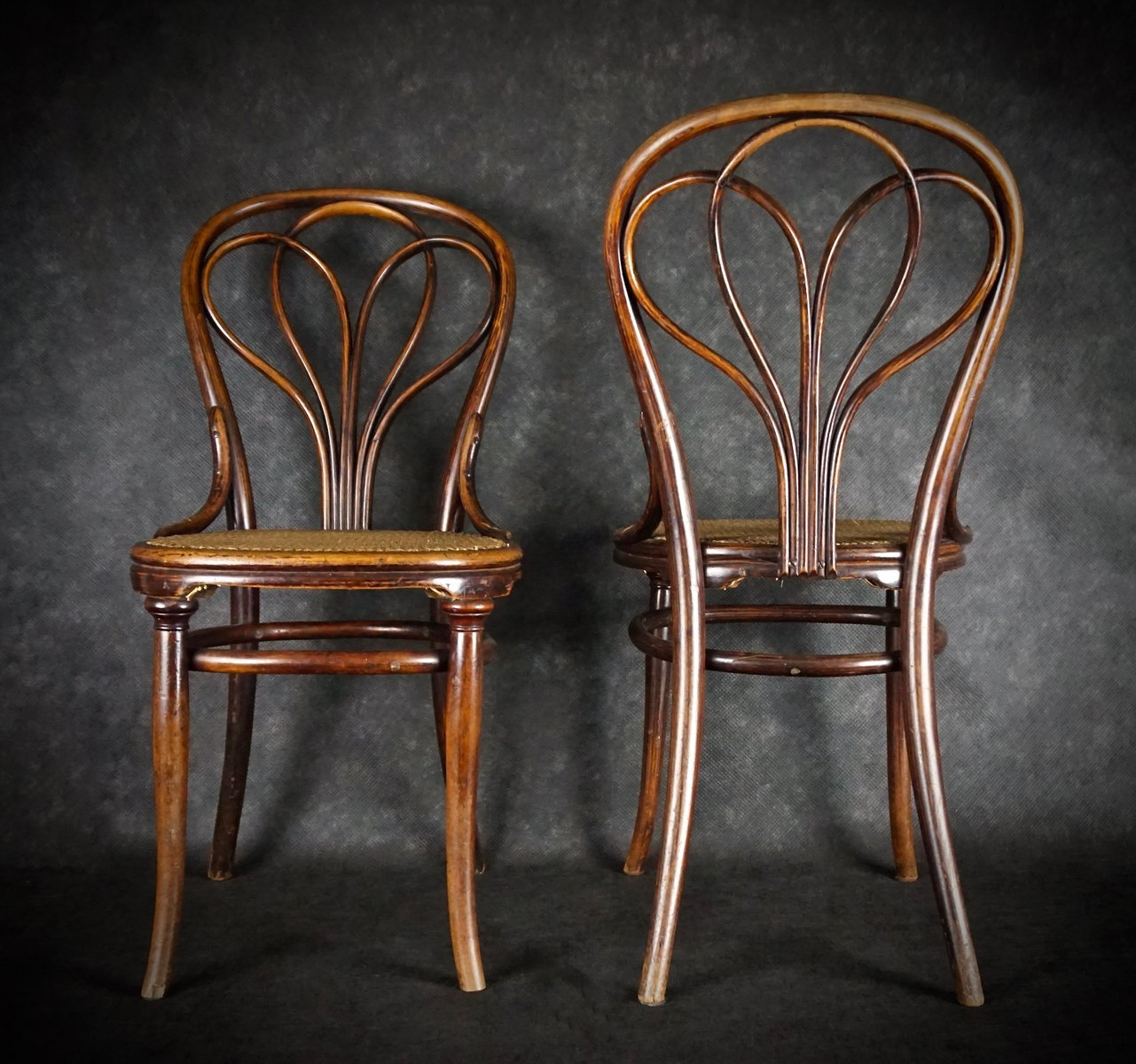 antike no 25 st hle von michael thonet f r gebr der. Black Bedroom Furniture Sets. Home Design Ideas