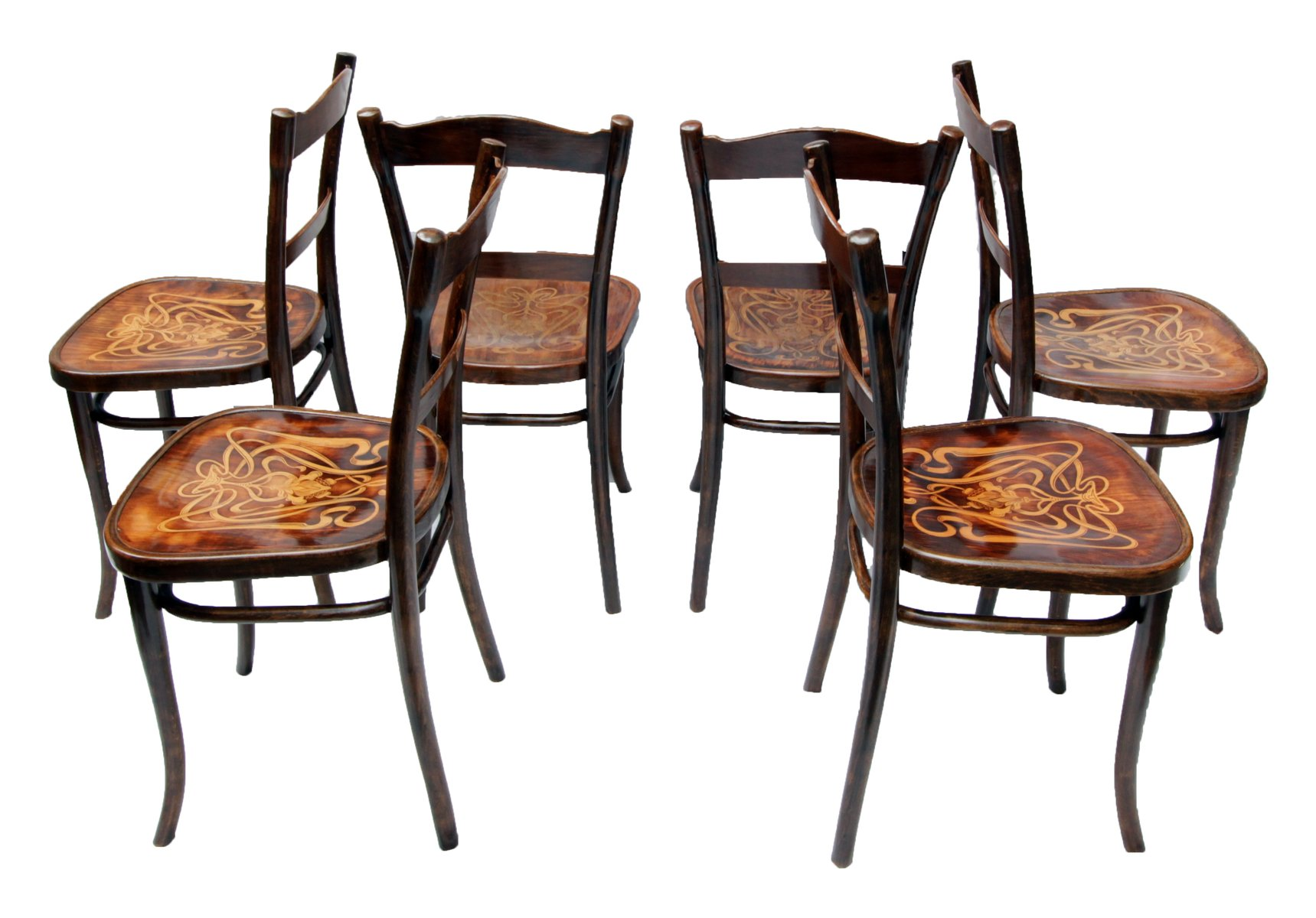 Antique Decorated Bentwood Dining Chairs From Thonet Set Of 6 For Sale At Pa