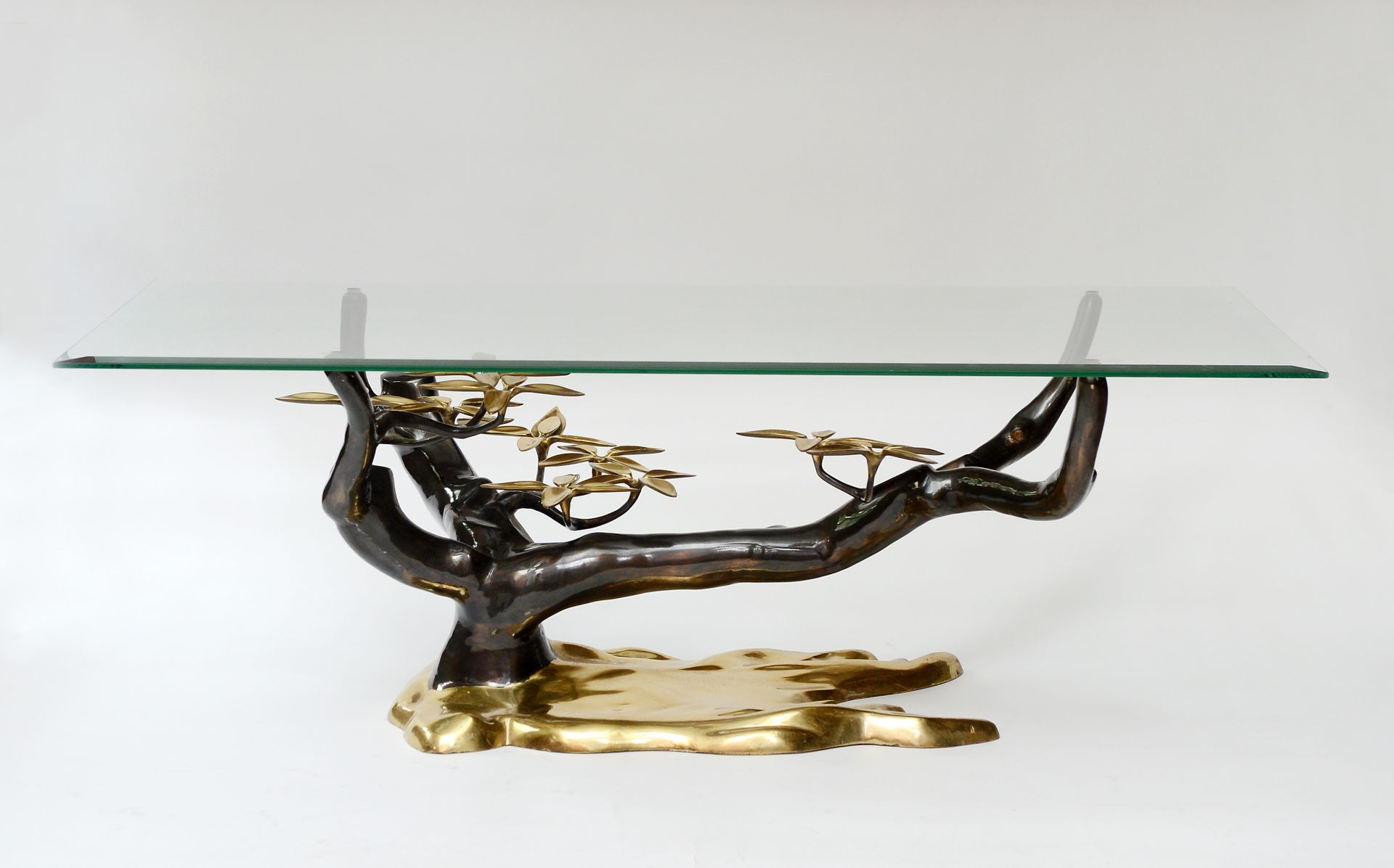 Bonsai Coffee Table by Willy Daro 1970s for sale at Pamono