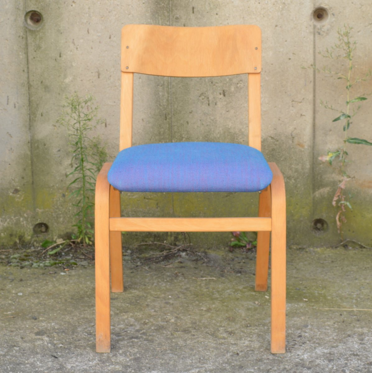 Czech Dining Chairs From TON 1970s Set Of 2 For Sale At Pamono