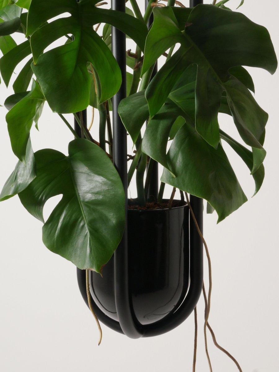 h ngende blumenampel vase von zascho petkow f r atelier haussmann bei pamono kaufen. Black Bedroom Furniture Sets. Home Design Ideas