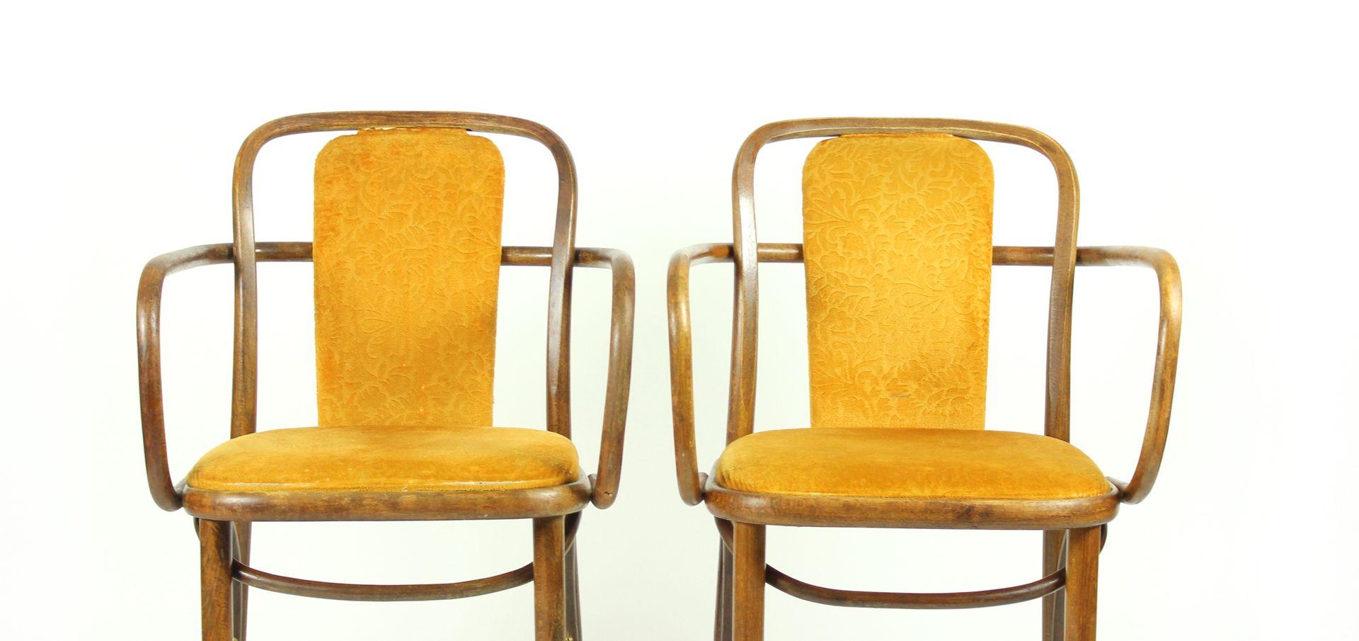 Sedie in legno curvo e velluto dorato di michel thonet for Sedie in velluto