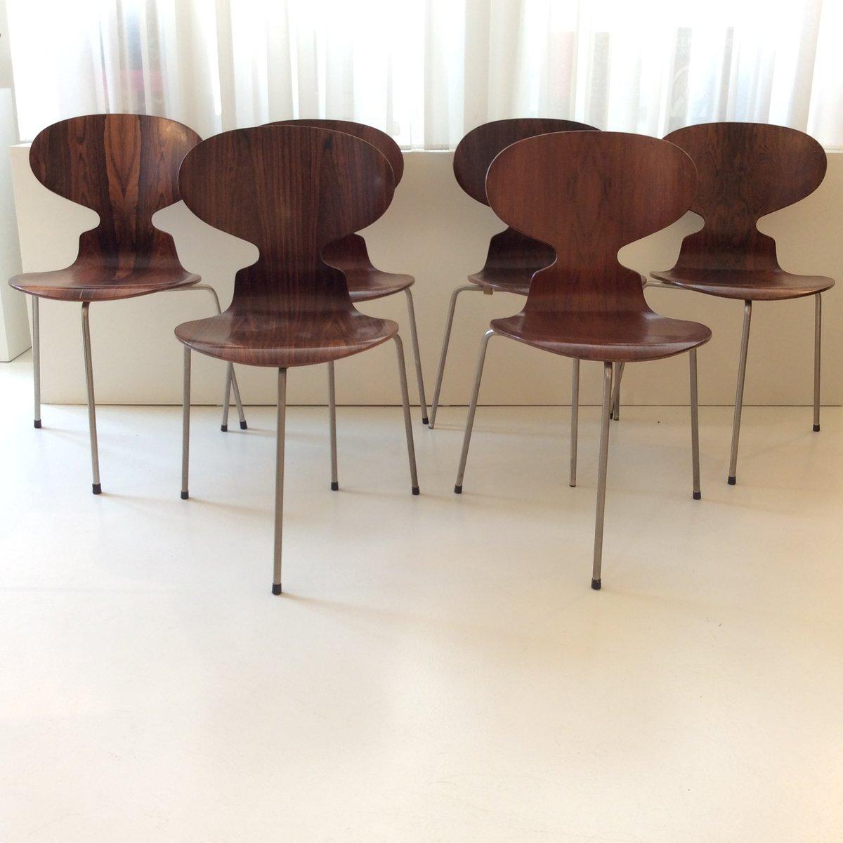 modell ant fh 3100 st hle aus palisander erste version von. Black Bedroom Furniture Sets. Home Design Ideas