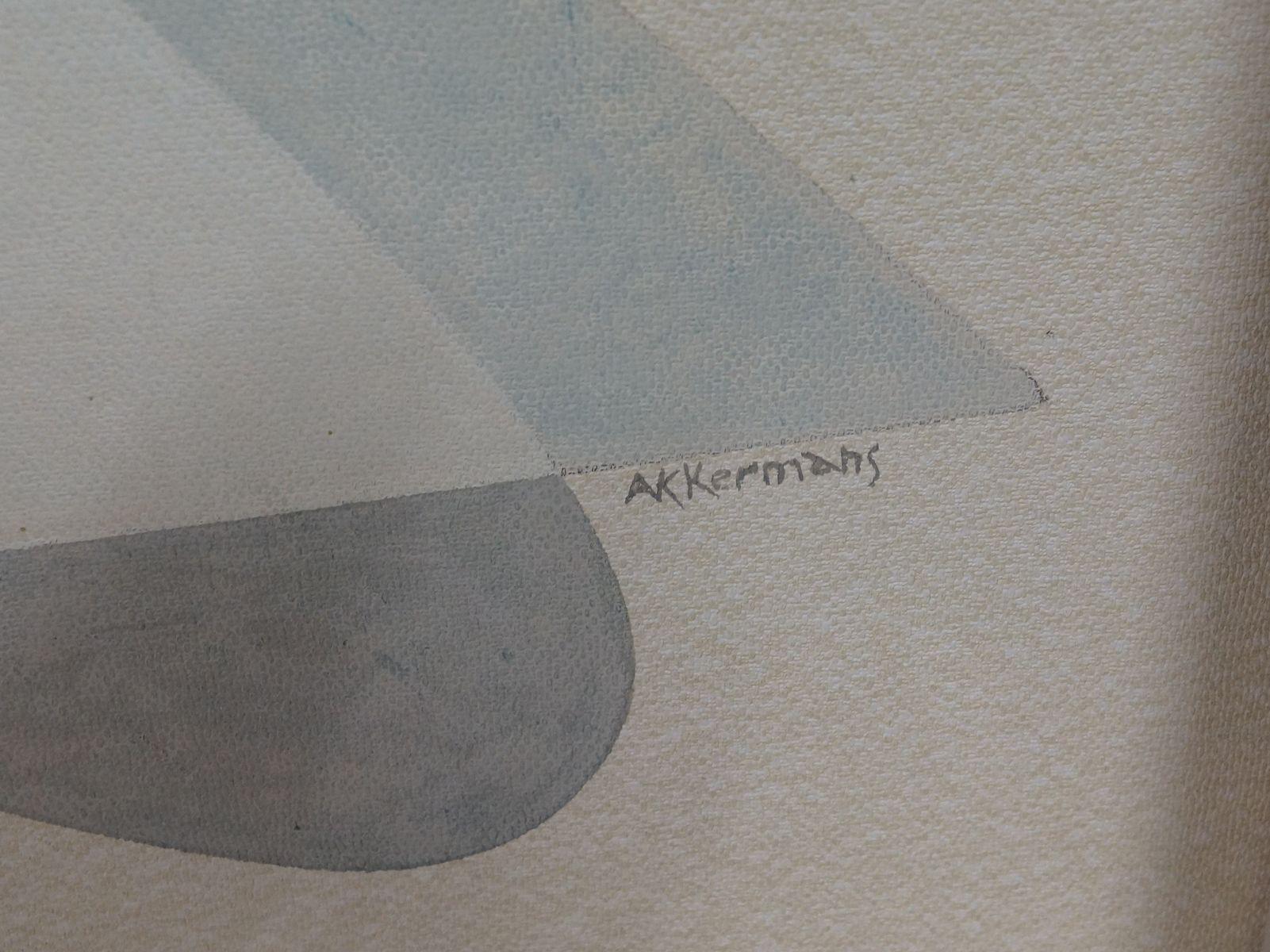 Teak Schrank mit Vinyl von Akkermans bei Pamono kaufen