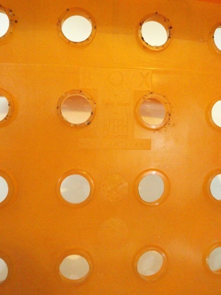 box stuhl von enzo mari f r aleph bei pamono kaufen. Black Bedroom Furniture Sets. Home Design Ideas